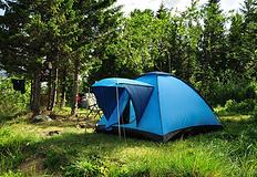 【户外知识】露营 防止昆虫需事先准备